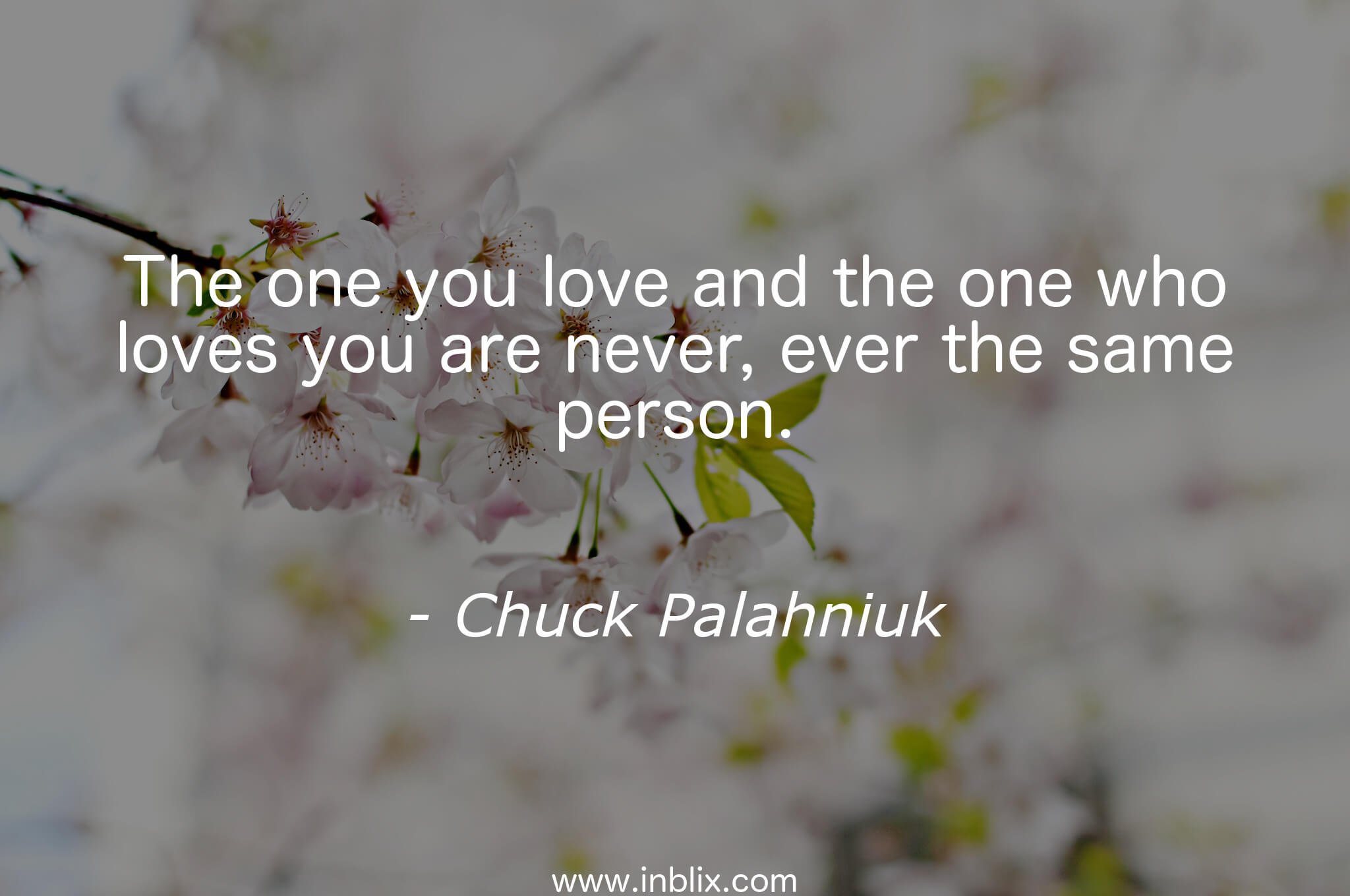 Love The One That Loves You Quotes The One You Love And The One Wchuck Palahniuk  Inblix